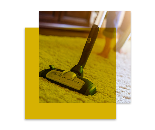 Professional Carpet Cleaning Fremantle