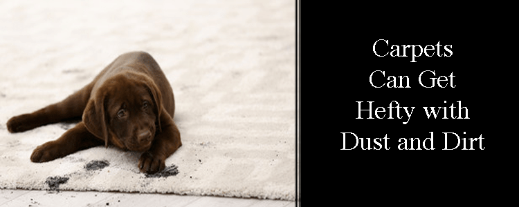Carpets can get hefty with dust and dirt